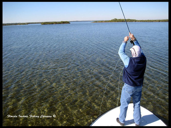 Mosquito lagoon fly fishing guide orlando saltwater fly for Mosquito lagoon fishing guides