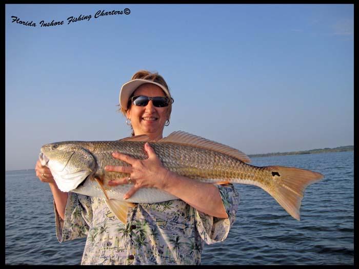 Orlando florida summer fishing report bloodydecks for Bloodydecks fish report
