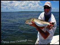 Orlando Florida Sea Trout Charters