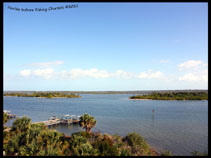 Oak Hill Florida Mosquito Lagoon