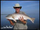 Mosquito Lagoon Red Fish