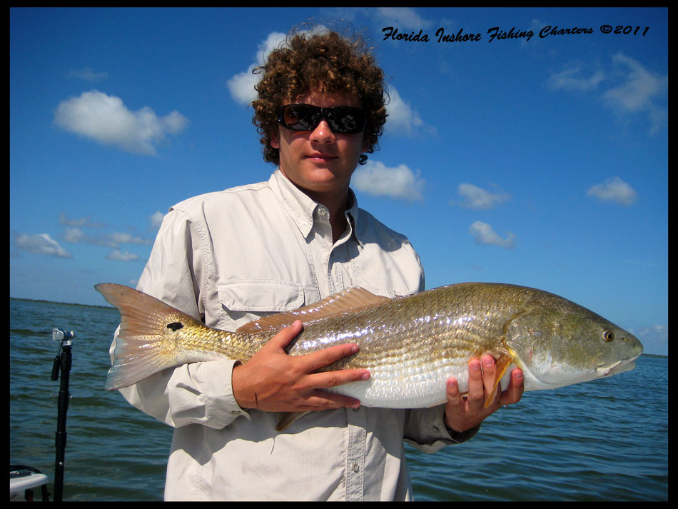 Indian river seatrout florida trout fishing pictures for Ormond beach fishing