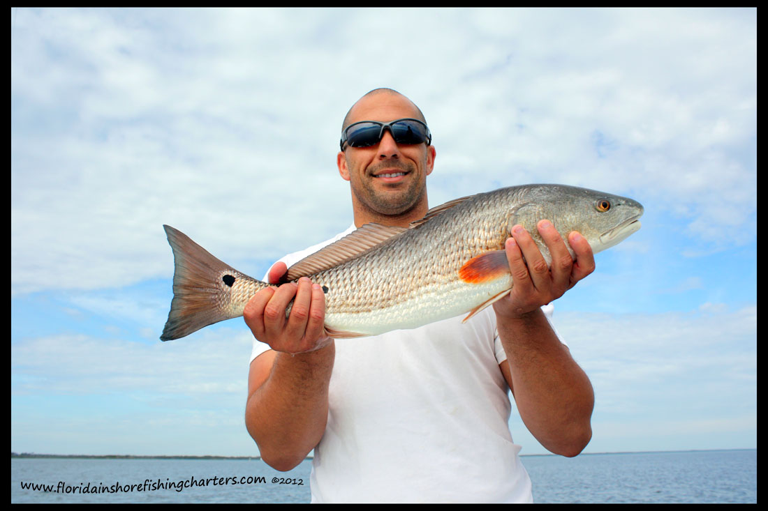 eu-red-fish-02-12.JPG
