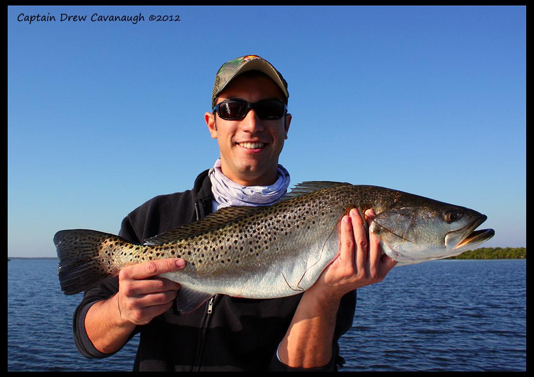 kk-mosquito-lagoon-trout-11-12.JPG