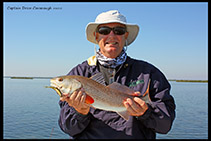 Mosquito Lagoon Red Drum