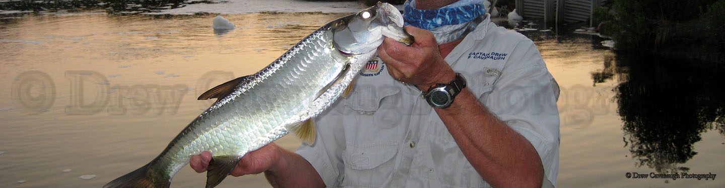Orlando saltwater flats fishing guide mosquito lagoon for Central florida fishing charters