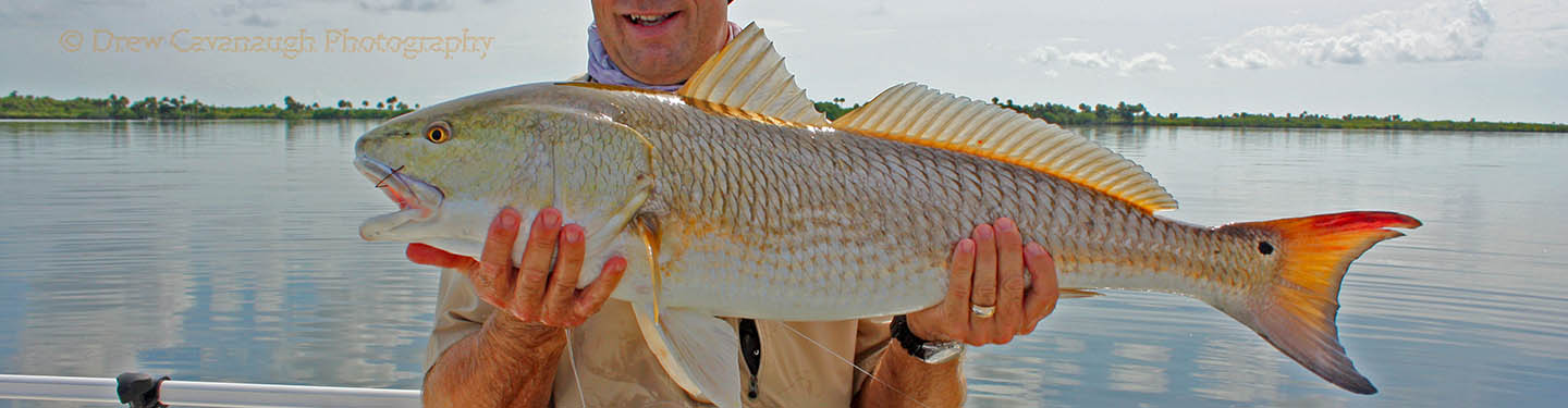 Saltwater flats fishing new smyrna beach ponce inlet for New smyrna fishing report