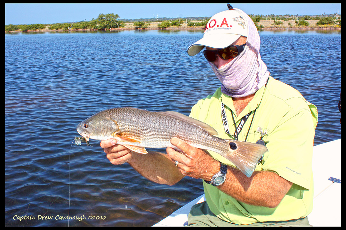 Orlando florida saltwater fishing report for Florida saltwater fishing