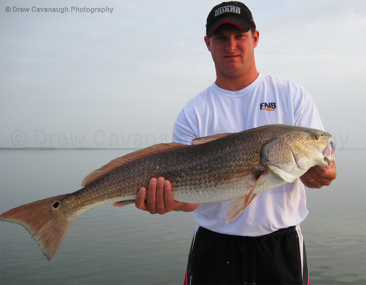 Central florida saltwater flats fishing photography for Red fish pictures