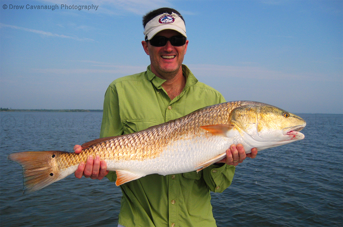 central florida saltwater flats fishing photography