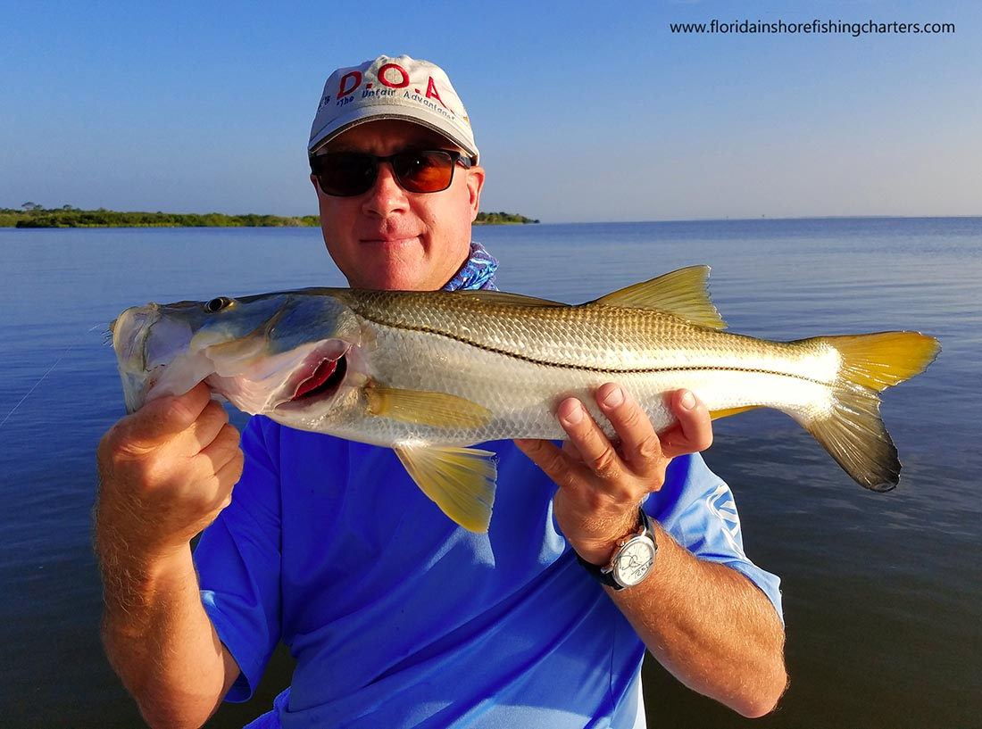 Central florida snook fishing sebastian inlet snook for Charter fishing sebastian fl
