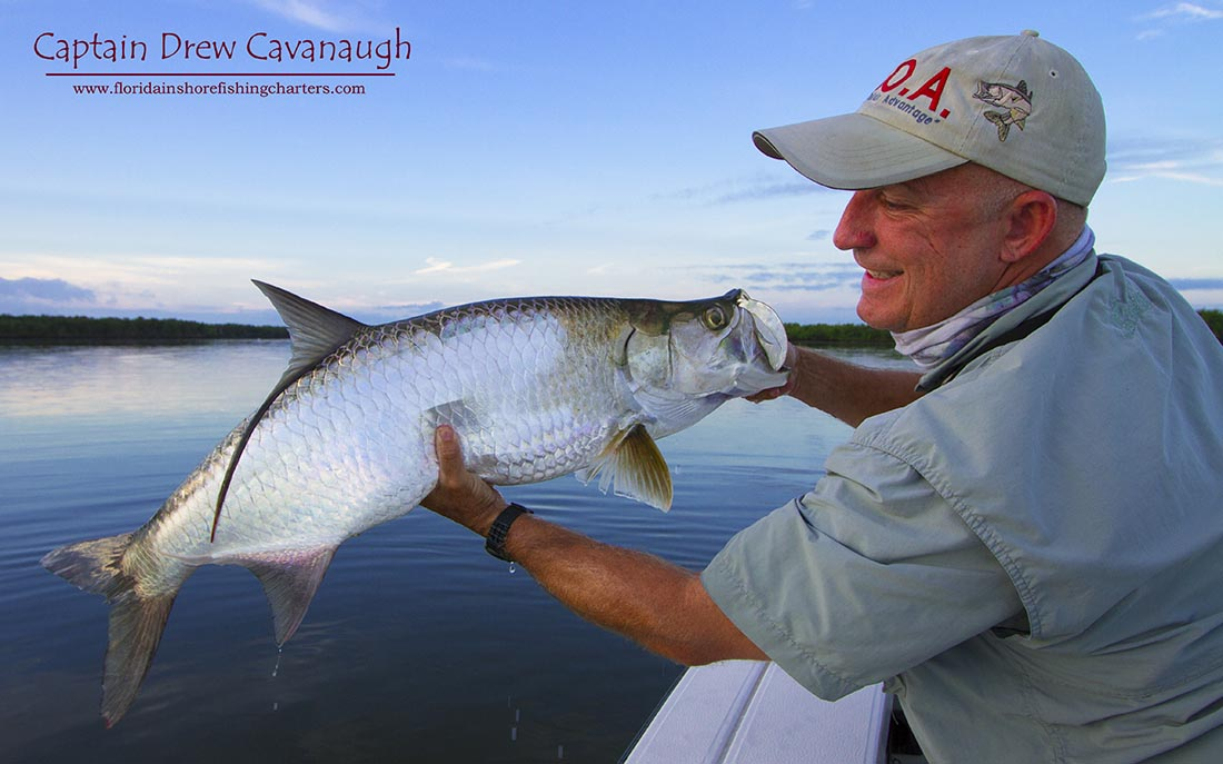 Central florida tarpon fishing ponce inlet tarpon charters for Florida tarpon fishing