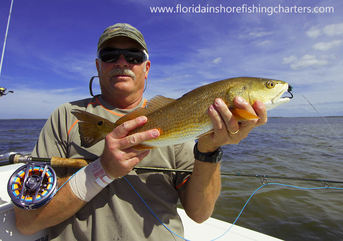 December 4th 2016 central florida backcountry flats for Fly fishing florida