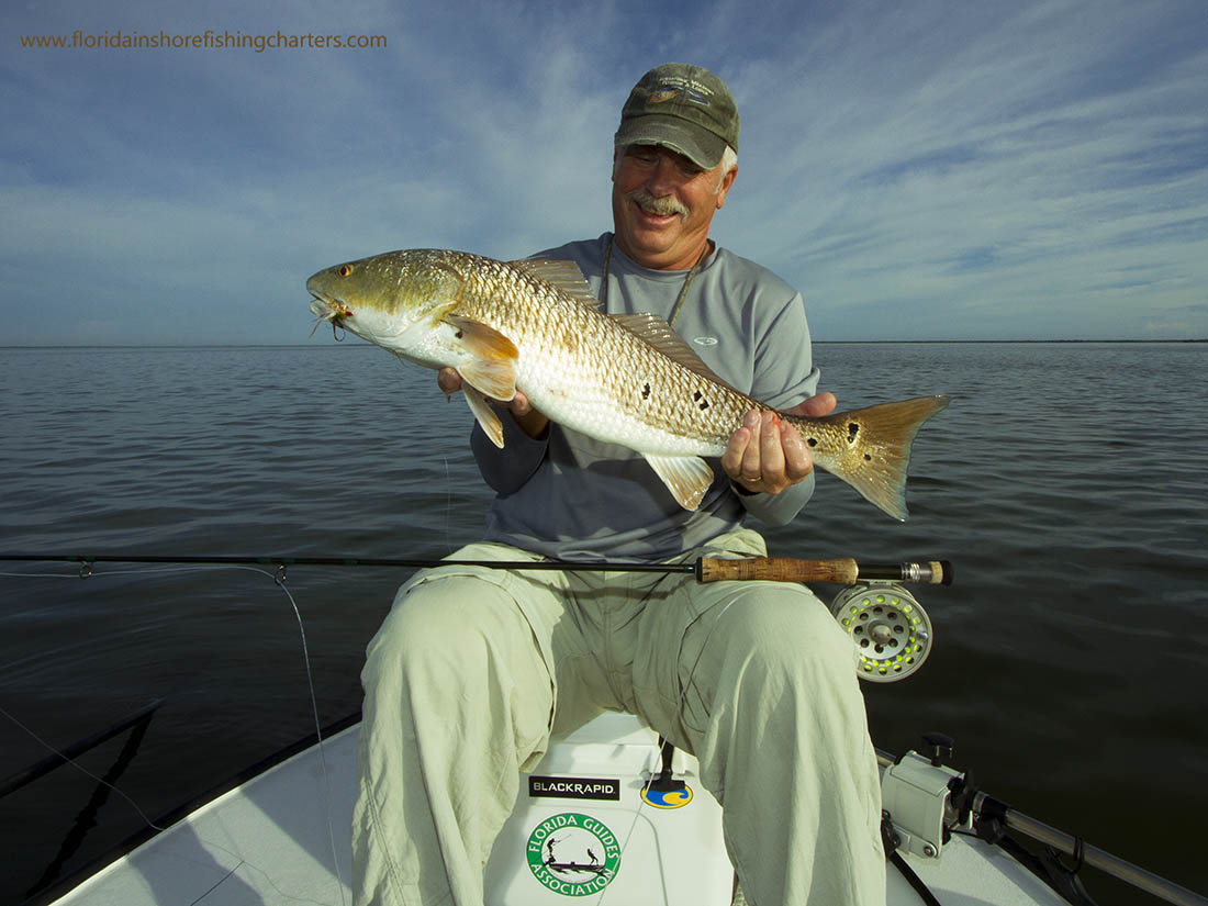 Orlando saltwater flats fishing guide mosquito lagoon for Fly fishing florida