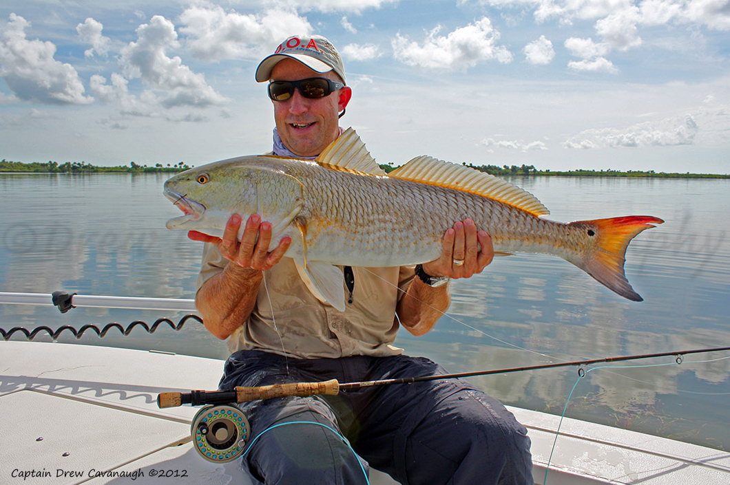 Mosquito lagoon redfish orlando redfish florida red drum for Fishing in orlando florida