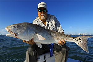Ponce Inlet Redfish Charters