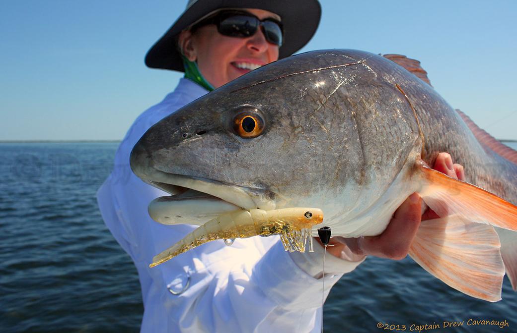 Mosquito lagoon redfish orlando redfish florida red drum for Saltwater drum fish