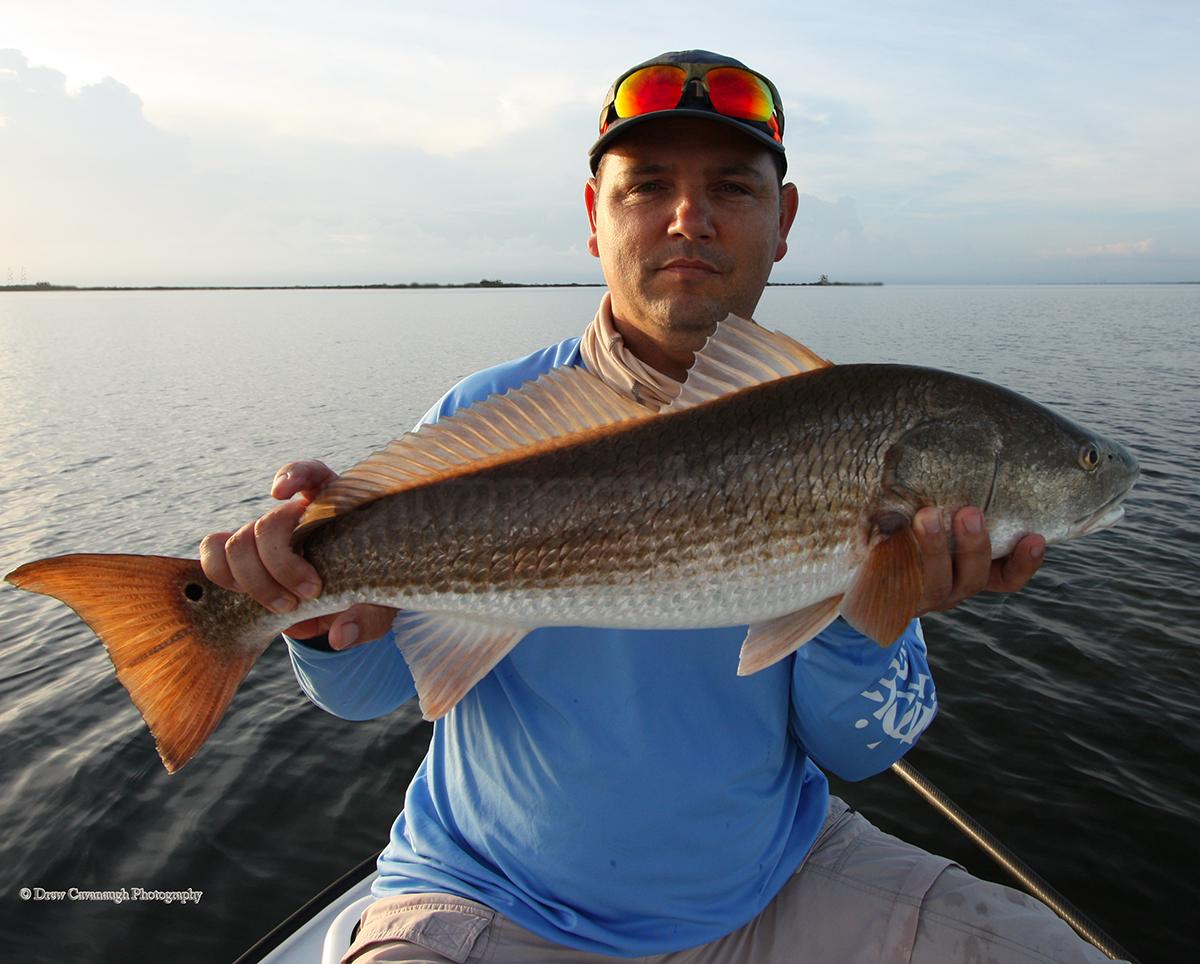 Mosquito lagoon redfish orlando redfish florida red drum for Saltwater fishing supplies