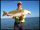 Oak Hill Bull Redfish