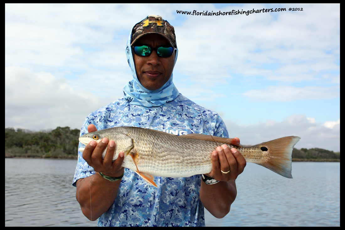 Fishing forum saltwater fishing forum saltwater fishing for Saltwater drum fish