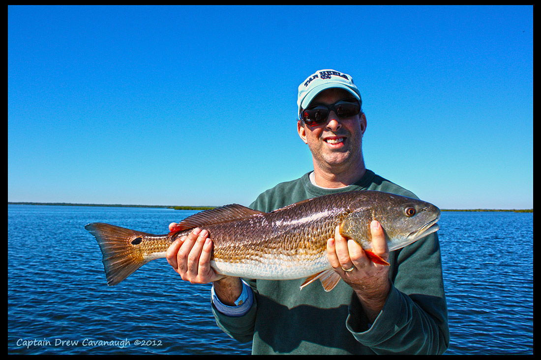 Mosquito Lagoon Fishing Report November 2012 Florida